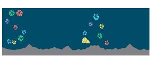 Sciani logo